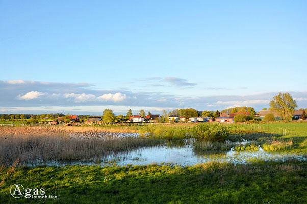 Schönfließ - kleiner Teich vor dem Dorf