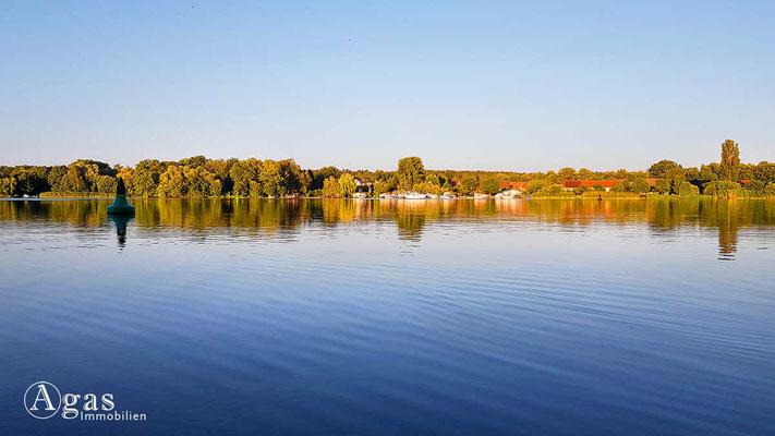 Immobilienmakler Dahme-Spreewald - Wildau