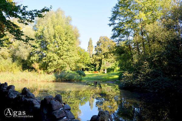 Schöneiche - Teich im kleinen Spreewaldpark