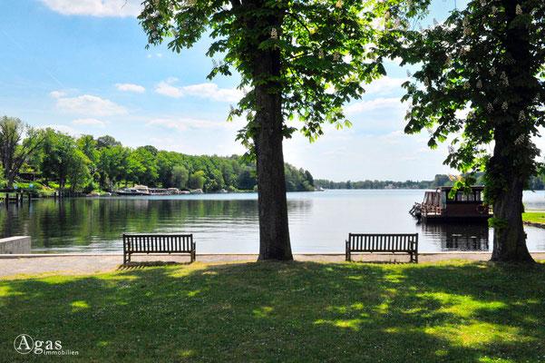 Immobilienmakler Oder-Spree - Woltersdorf