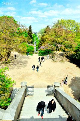 Berlin Kreuzberg - Viktoriapark Wasserfälle am Nationaldenkmal für die Befreiungskriege (2)
