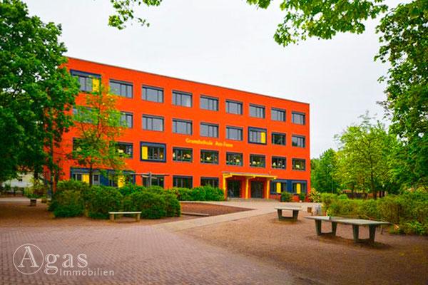 Damsdorf Schule
