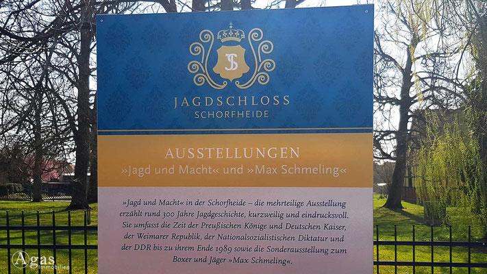 Immobilienmakler Schorfheide - Ausstellungen im Schloss