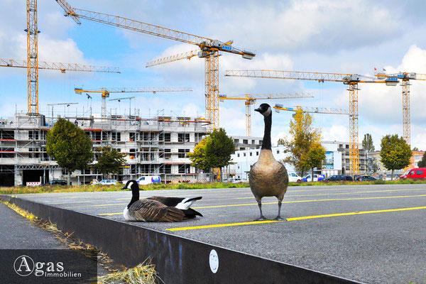 HAAKE Höfe Spandau - Baufortschritte & neugierige Beobachter