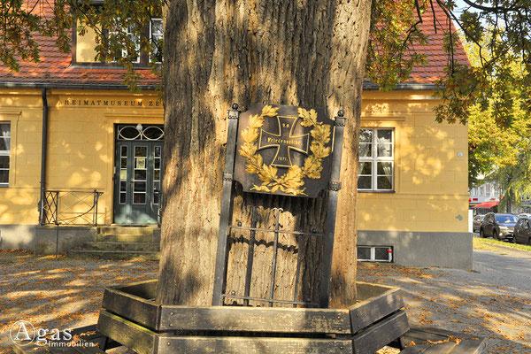 Berlin-Zehlendorf - Die Friedenseiche vor dem Heimatmuseum Zehlendorf