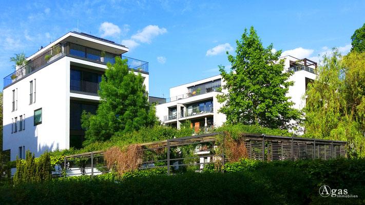 Berlin-Stralau Makler - Neubauprojekt an der Spree (2)