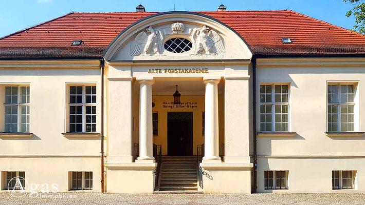 Immobilienmakler Eberswalde - Alte Forstakademie - Architekturbildarchiv