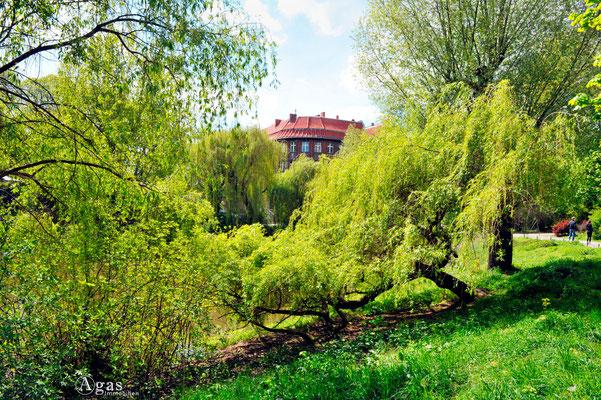 Berlin-Weißensee - Am Weißenseer Park