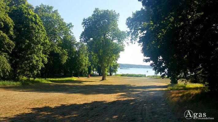 Immobilienmakler Marquardt-Potsdam - Blick durch den Schlosspark zum Schlänitzsee