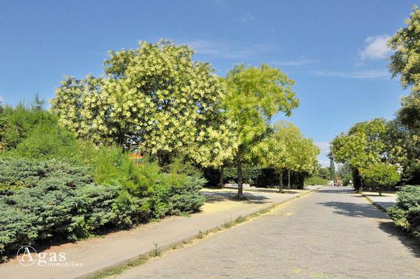 Prenzlauer Berg - Am Mauergarten