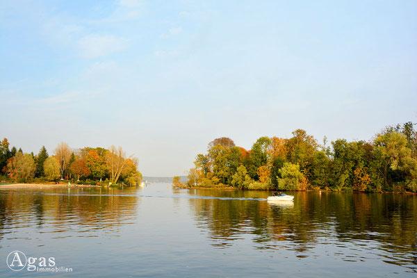 Berlin-Kladow - Blick über die Havel zum Naturschutzgebiet, der Flussinsel Imchen