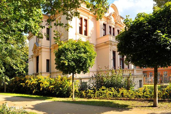 Immobilienmakler Brandenburg (Havel) - Historische Villa am Alfred-Messel-Platz