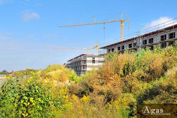Zum großen Herzberg - Potsdam-Golm - Neubaufortschritte am Zaunkönigweg