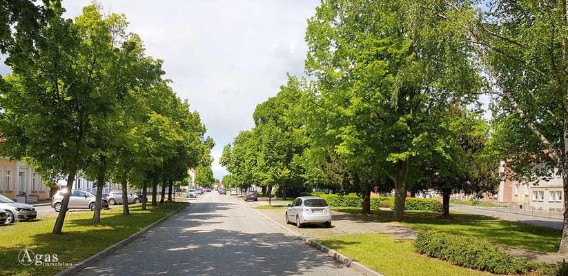 Immobilienmakler Letschin - Herrlich grüne Dorfstraße in Letschin (entspanntes Parken)