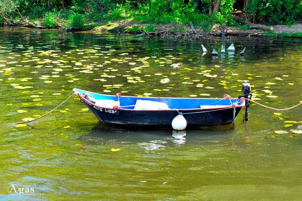 """Mit der """"Alten Liebe"""" zum eigenen Hausboot ..."""