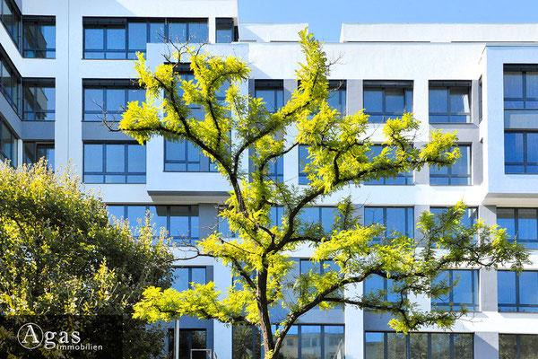 ZENITH Berlin - Wilmersdorf - Neubau in der Spichernstraße