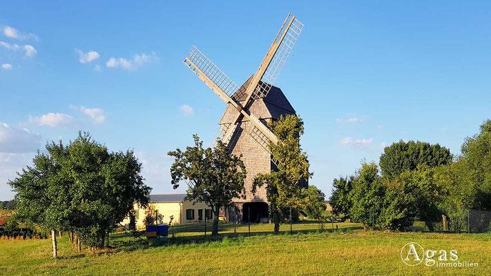 Makler Öberkrämer-Vehlefanz - Bockwindmühle