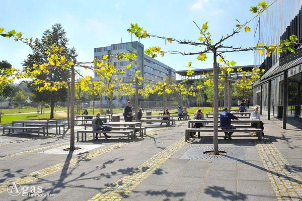 Potsdam-Golm - Universitätscampus (Bereichsbibliothek - Terrasse)