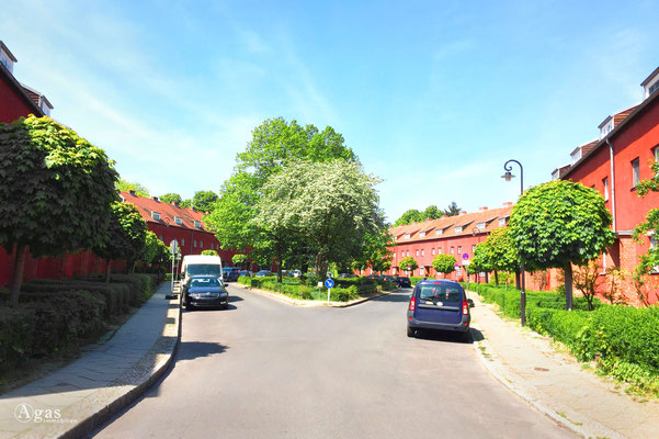Berlin-Britz - Hufeisensiedlung (1)