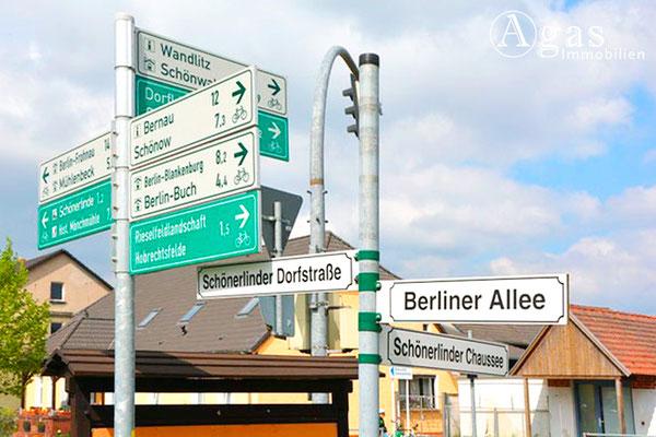 Schönerlinde vor den Toren Berlins