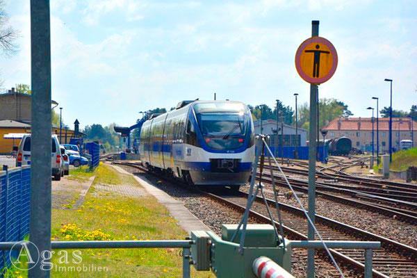 Heidekrautbahn in Basdorf 2