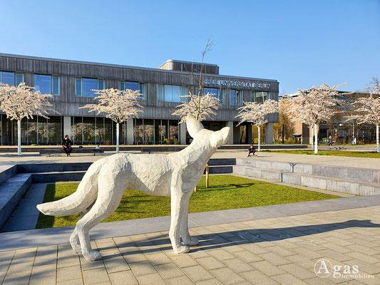 Immobilienmakler Berlin-Dahlem - Haupt-Campus der Freie Universität Berlin