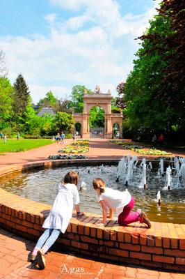 Immobilienmakler Berlin-Pankow - Bürgerpark Pankow, am Brunnen