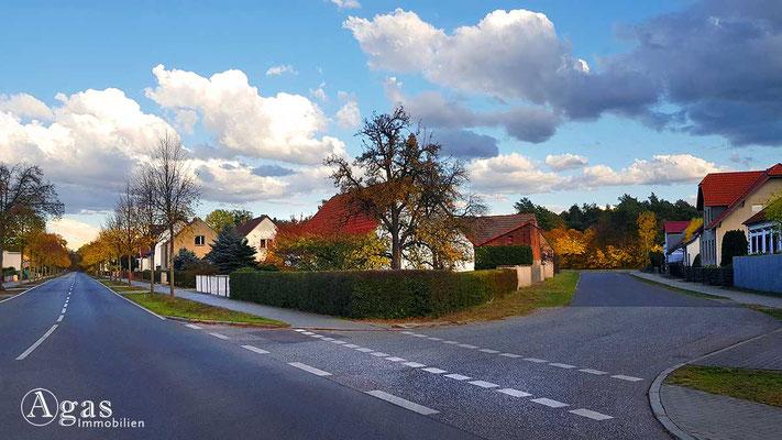 Makler Klosterfelde - Idyllische Ortseinfahrt Klosterfelde