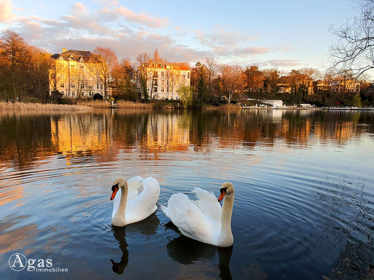 Immobilienmakler Halensee - Friedenthalpark Halensee