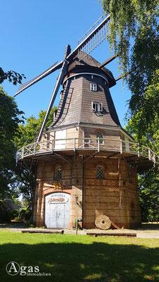 Immobilienmakler Mariendorf - Adlermühle (historische Windmühle)