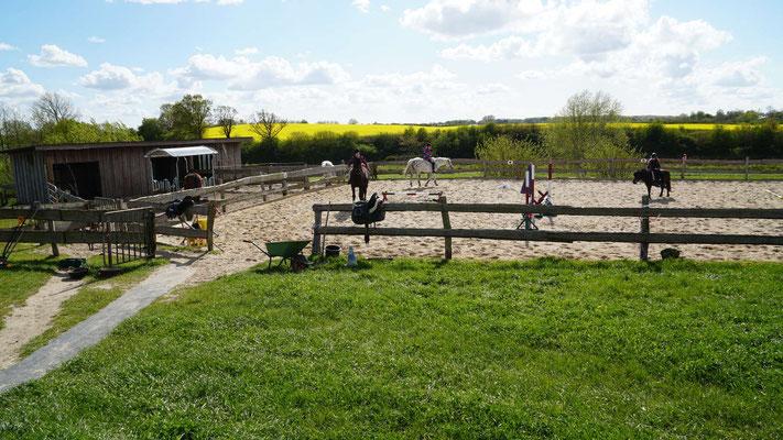 Ferien auf dem Bauernhof, Schleswig Holstein, Angeln, Schlei