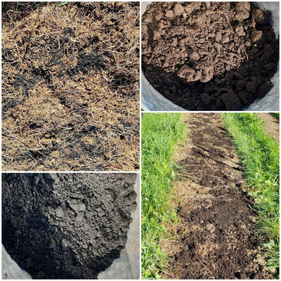 Homöopathische Dosierungen von Bodenaktivator und Kompost kommen auf ein Beet.