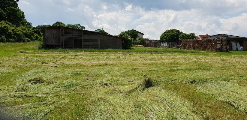 """""""Windrow gardening"""" (direkt übersetzt: """"Schwad-Gärtnern"""") hat sich als effektiv und effizient erwiesen. Trotzdem braucht es auch Bodengewebe, um volle Verdunkelung zu sichern.."""