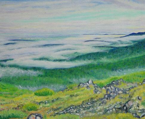 F10 望岳台にて雲海を観る
