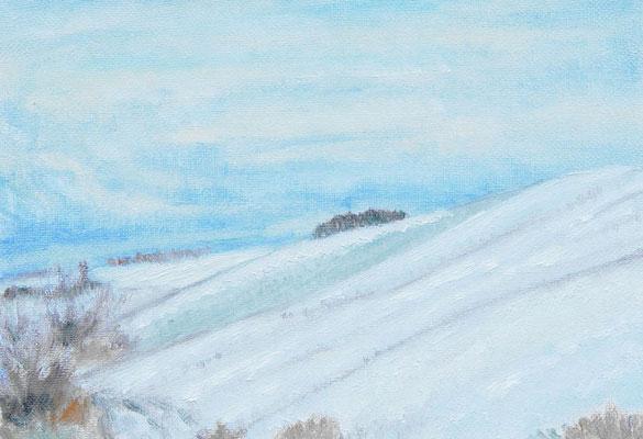 SM 2004.1.15制作 自宅近くの雪景色
