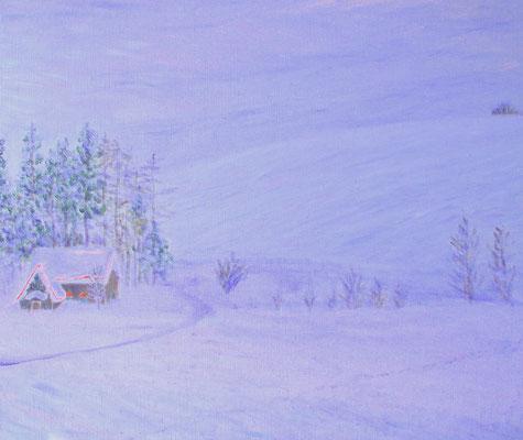 F10 2005.2.12制作 雪の押し花学園さん(自宅向かいの雪景色)