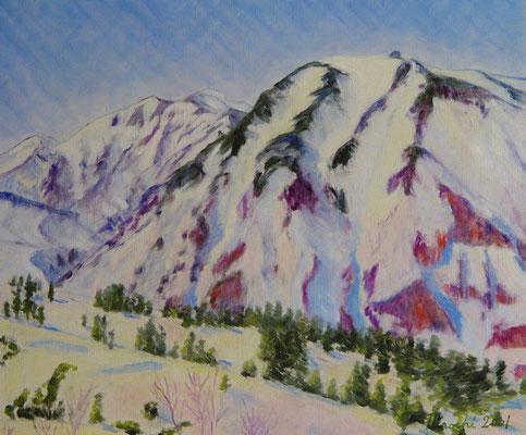 F10 2001.4.30制作 十勝岳温泉陵雲閣近くにて富良野岳を望む