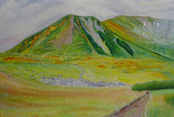 M15 2000.9.15制作 大雪高原第1花園にて緑岳を望む(しばしエゾシカと共に)