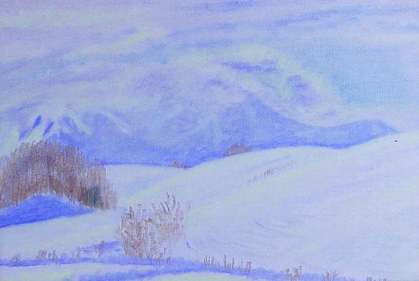 SM 2006.1.8制作 自宅近くの雪景色