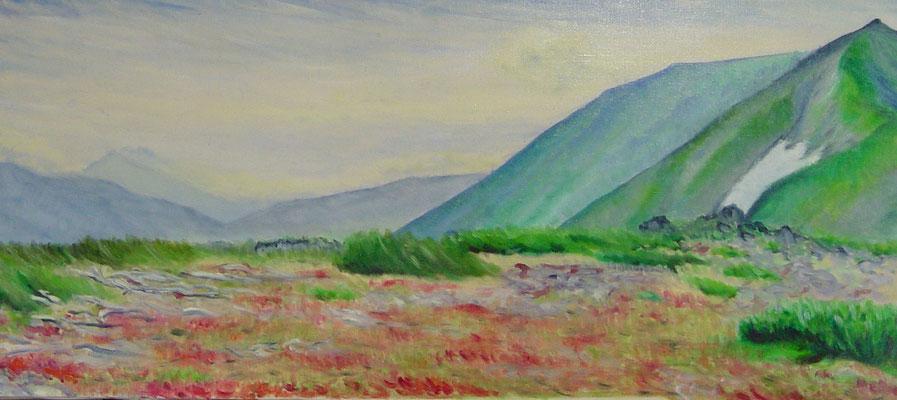910×410mm 赤岳コマクサ平にて東岳を望む