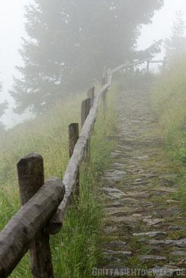 Steiniger Weg zur Mutkopfhütte hinunter.