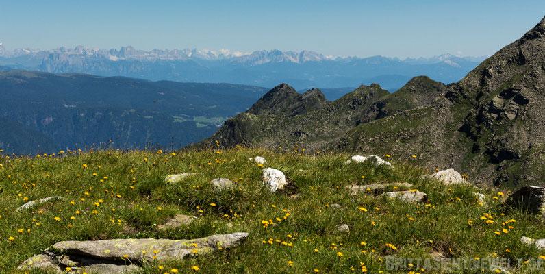 Blick in die Ferne: Rosengarten mit Schlern, Latemar, Schwarzhorn und Weißhorn beim Jochgrimm