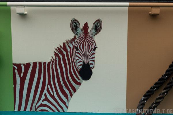 Zebra an der Fähre