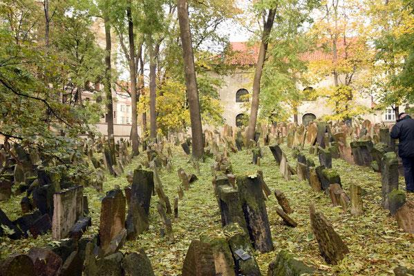 9.Joodse kerkhof