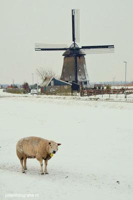 213.Winterwereld, Sint Pancras