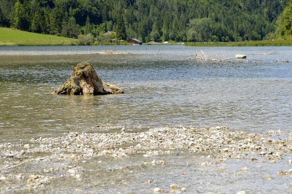 20. Pillersee, Tirol