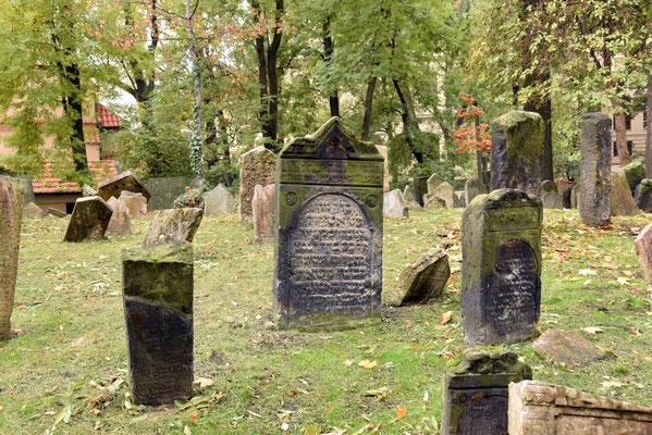 4.Joodse kerkhof