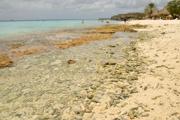 8. Playa Cas Abao