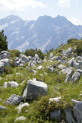 9. Waidring Steinplatte