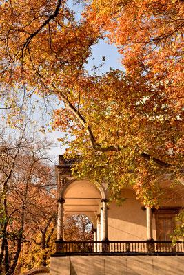84.Paleis Belvedere in de herfst
